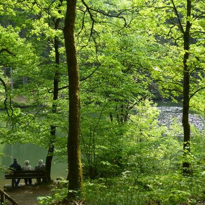 naturpark sauerland rothaargebirge nimmt arbeit auf kreis siegen wittgenstein. Black Bedroom Furniture Sets. Home Design Ideas
